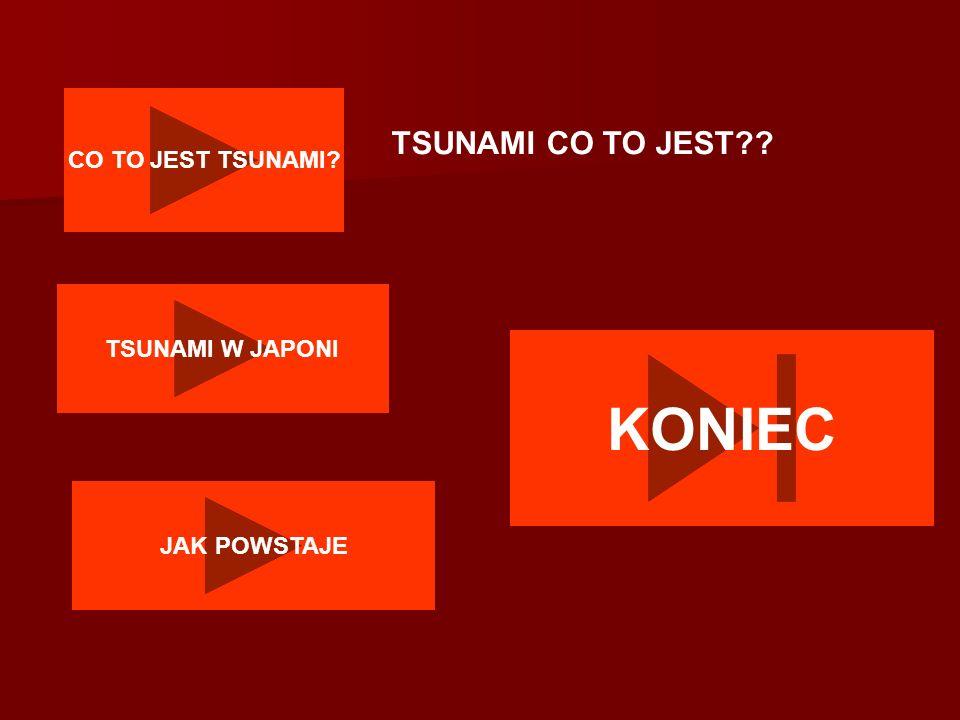 CO TO JEST TSUNAMI? TSUNAMI CO TO JEST?? TSUNAMI W JAPONI JAK POWSTAJE KONIEC