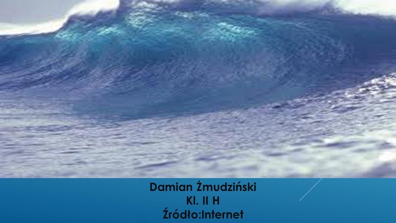 Damian Żmudziński Kl. II H Źródło:Internet