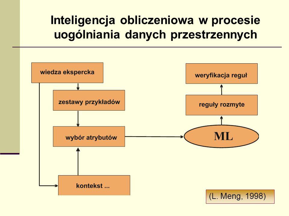 Inteligencja obliczeniowa w procesie uogólniania danych przestrzennych (L. Meng, 1998)