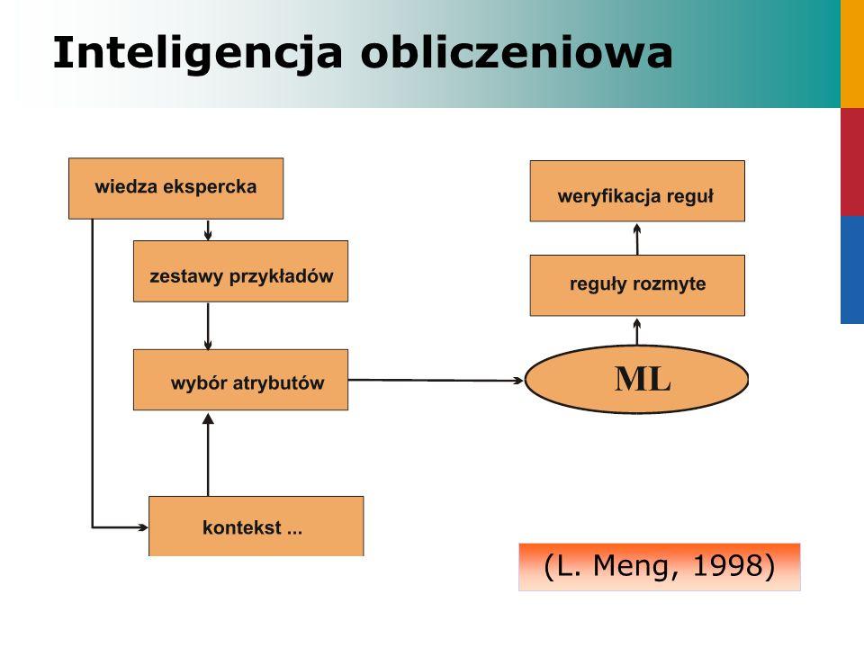 Inteligencja obliczeniowa (L. Meng, 1998)