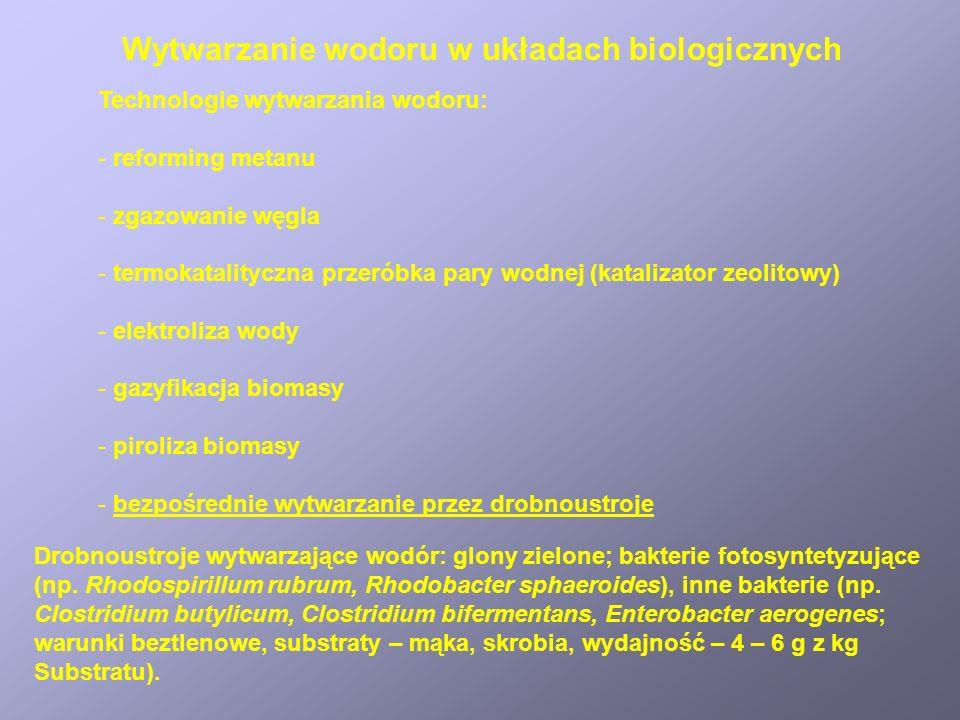 Wytwarzanie wodoru w układach biologicznych Technologie wytwarzania wodoru: - reforming metanu - zgazowanie węgla - termokatalityczna przeróbka pary w