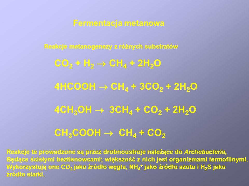 Fermentacja metanowa CO 2 + H 2 CH 4 + 2H 2 O 4HCOOH CH 4 + 3CO 2 + 2H 2 O 4CH 3 OH 3CH 4 + CO 2 + 2H 2 O CH 3 COOH CH 4 + CO 2 Reakcje metanogenezy z