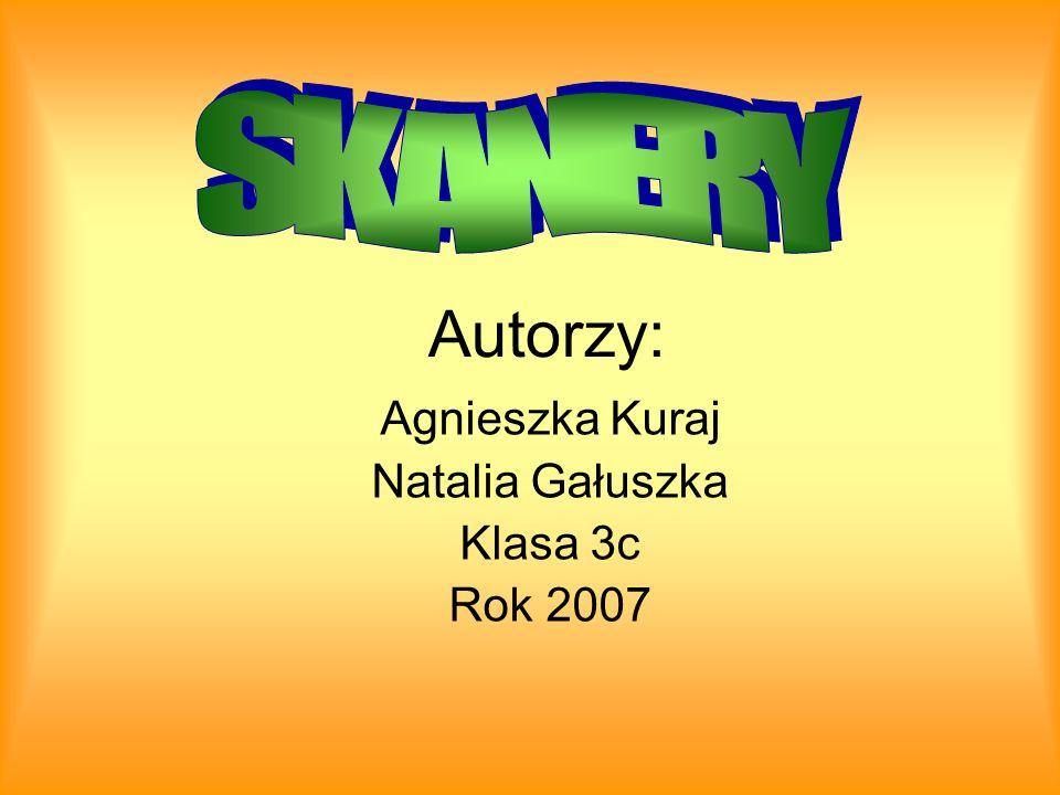 Autorzy: Agnieszka Kuraj Natalia Gałuszka Klasa 3c Rok 2007