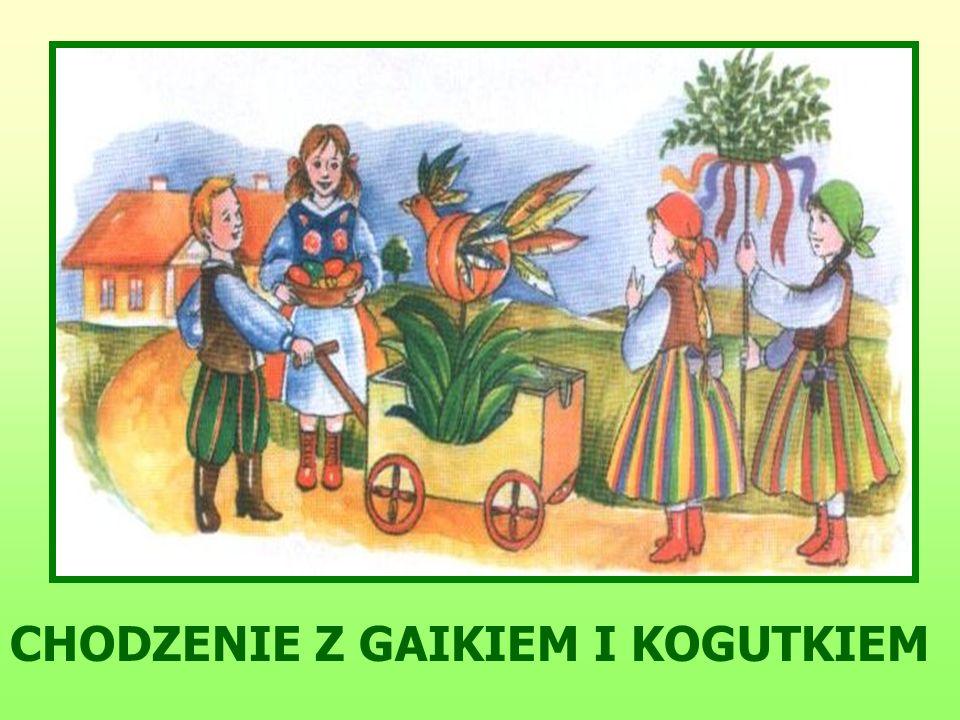 CHODZENIE Z GAIKIEM I KOGUTKIEM
