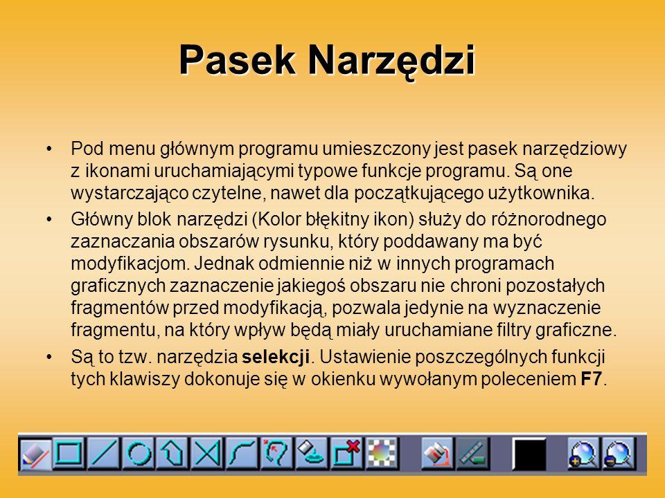Pasek Narzędzi Pod menu głównym programu umieszczony jest pasek narzędziowy z ikonami uruchamiającymi typowe funkcje programu. Są one wystarczająco cz