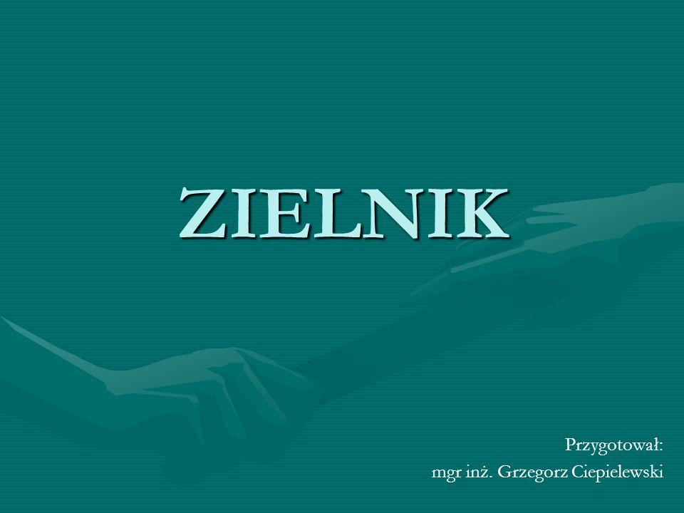 ZIELNIK Przygotował: mgr inż. Grzegorz Ciepielewski