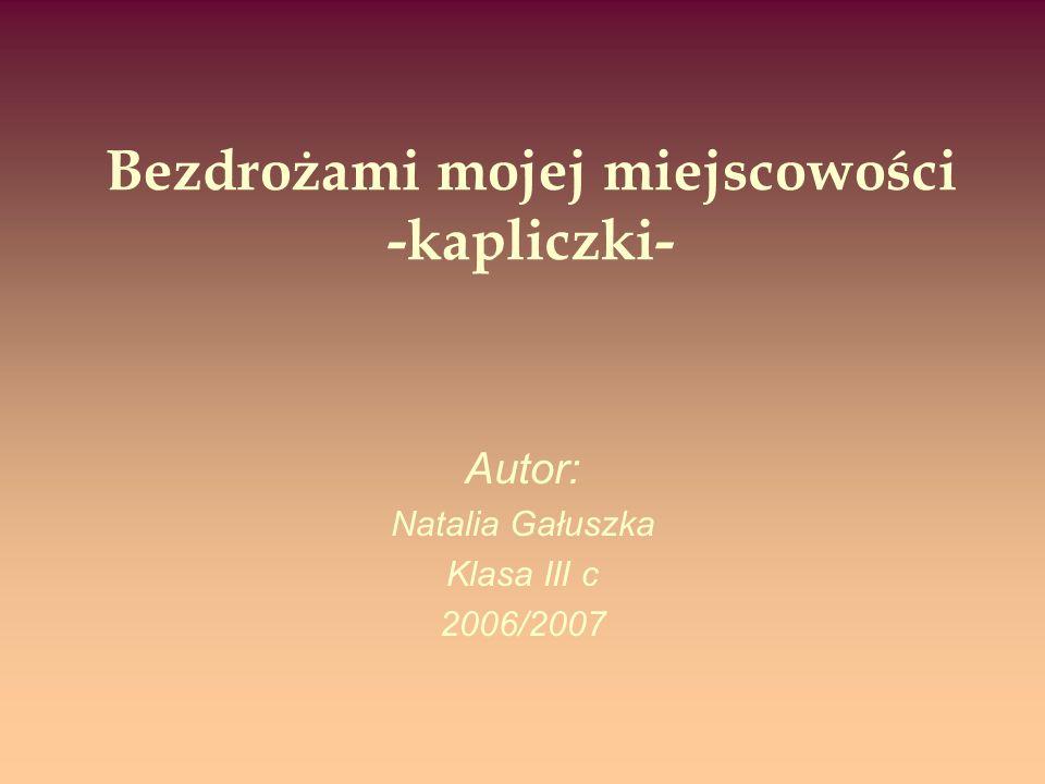 Bezdrożami mojej miejscowości -kapliczki- Autor: Natalia Gałuszka Klasa III c 2006/2007