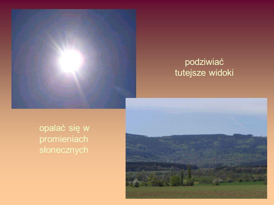 opalać się w promieniach słonecznych podziwiać tutejsze widoki