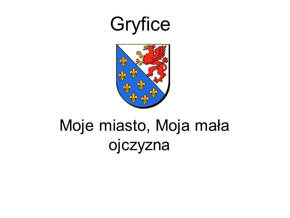 Gryfice Moje miasto, Moja mała ojczyzna