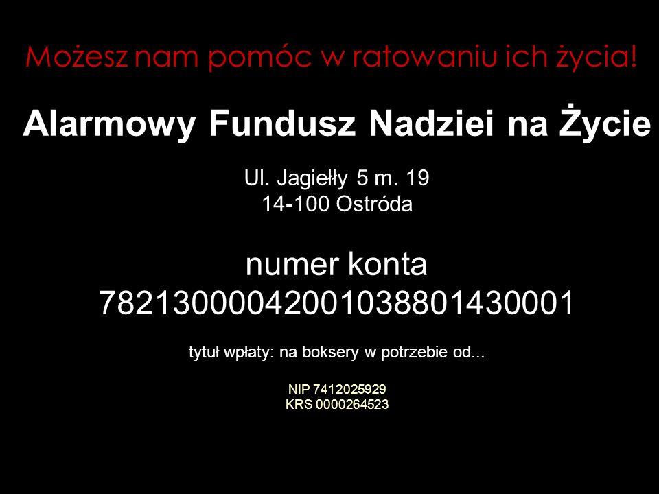 Alarmowy Fundusz Nadziei na Życie Ul. Jagiełły 5 m.