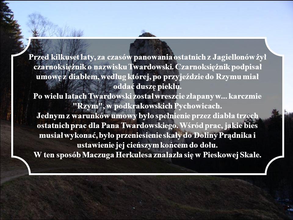 Przed kilkuset laty, za czasów panowania ostatnich z Jagiellonów żył czarnoksiężnik o nazwisku Twardowski. Czarnoksiężnik podpisał umowę z diabłem, we