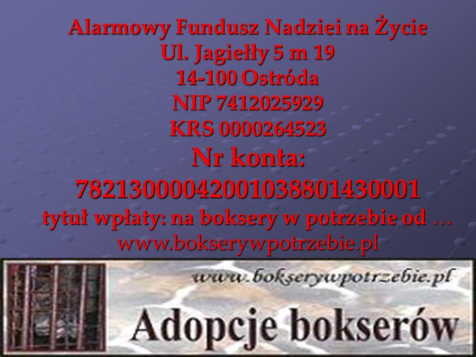 Alarmowy Fundusz Nadziei na Życie Ul. Jagiełły 5 m 19 14-100 Ostróda NIP 7412025929 KRS 0000264523 Nr konta: 78213000042001038801430001 tytuł wpłaty: