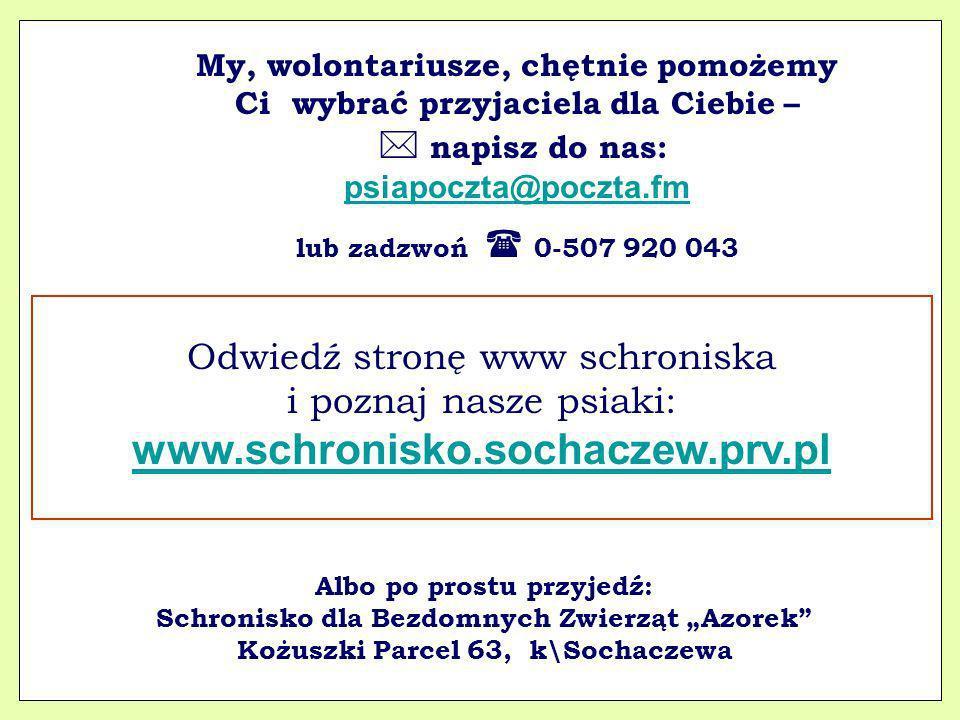My, wolontariusze, chętnie pomożemy Ci wybrać przyjaciela dla Ciebie – napisz do nas: psiapoczta@poczta.fm lub zadzwoń 0-507 920 043 Albo po prostu pr