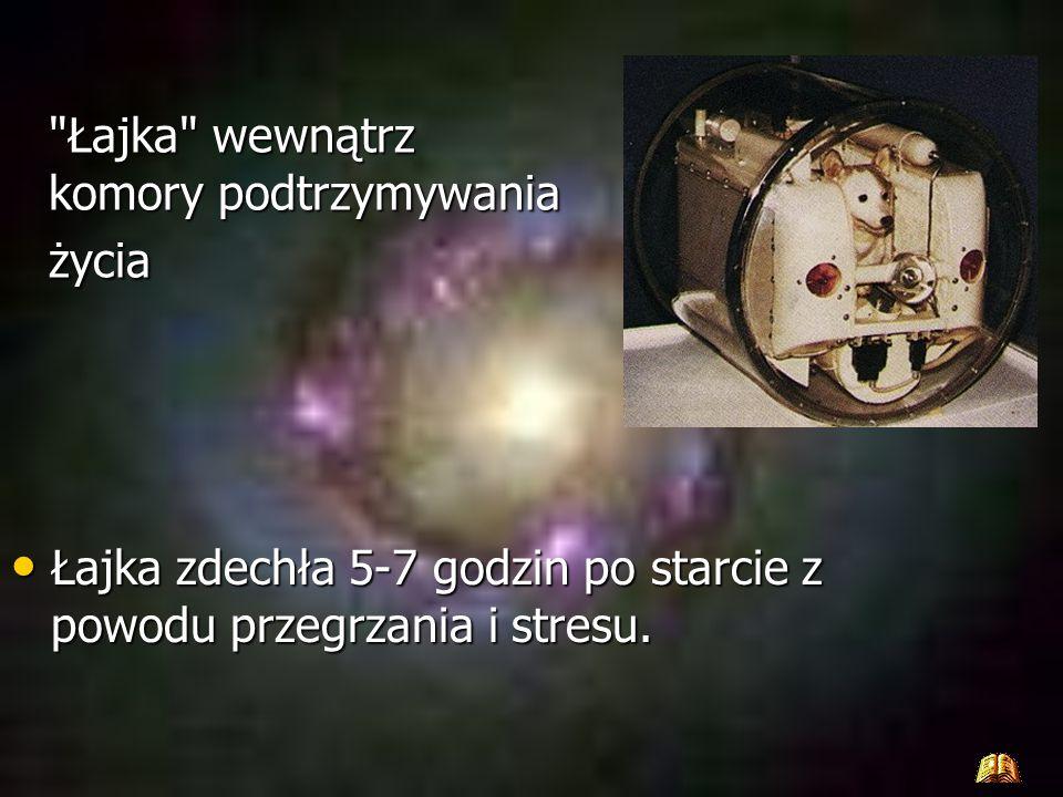 Zwierze w przestrzeń kosmiczną wyniosła druga radziecka satelita Sputnik II. Całe zdarzenia miejsce miało 3 Listopada 1957. Niestety pies nie mógł wró