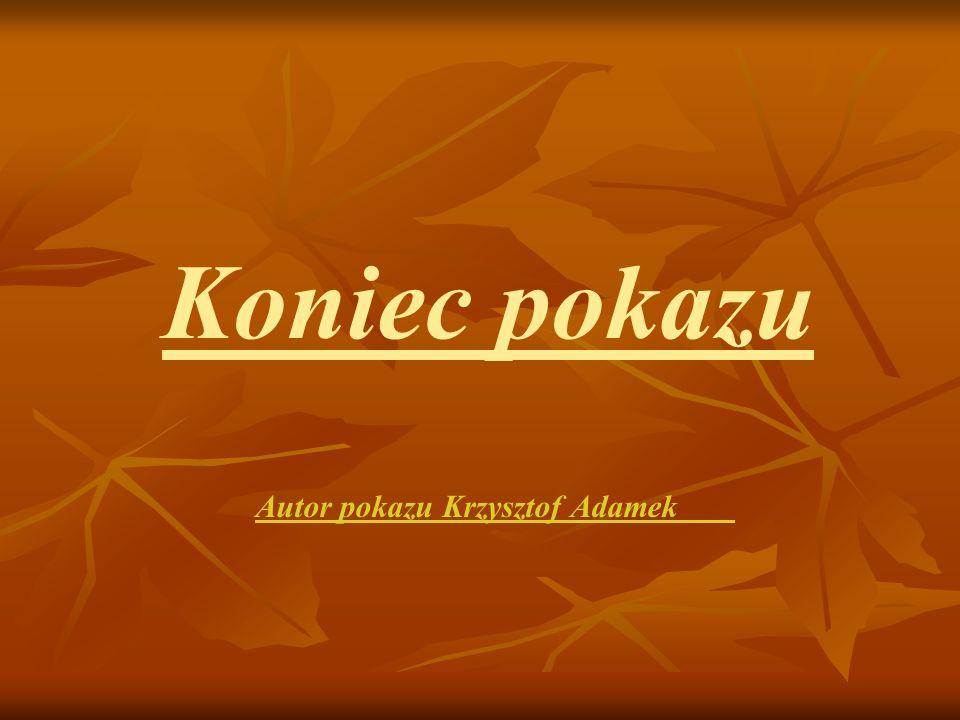 Koniec pokazu Autor pokazu Krzysztof Adamek