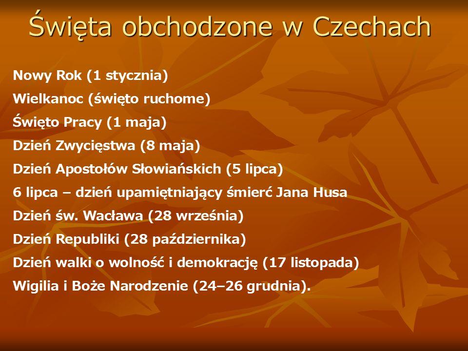 Mini słowniczek polsko- czeski.