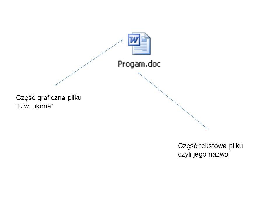 Część graficzna pliku Tzw. ikona Część tekstowa pliku czyli jego nazwa