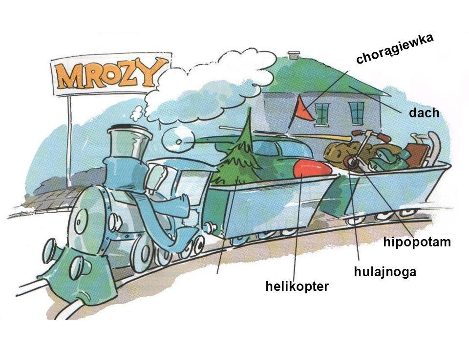 chorągiewka dach hipopotam hulajnoga helikopter