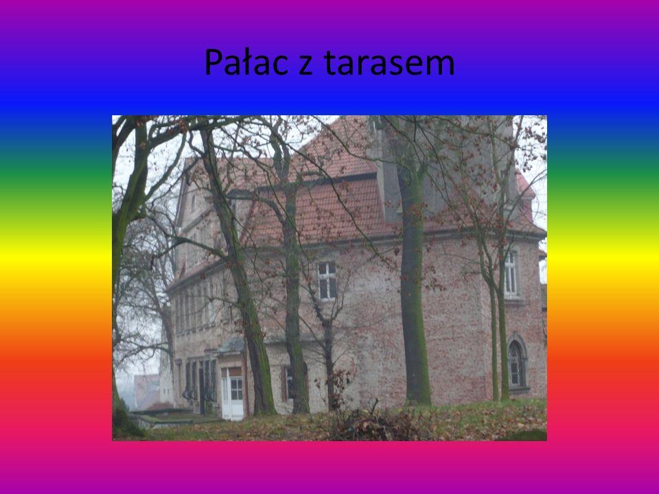 Pałac z tarasem
