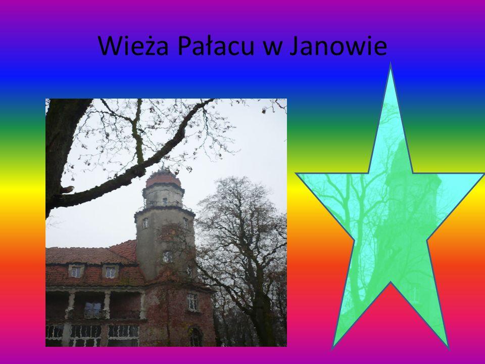Wieża Pałacu w Janowie