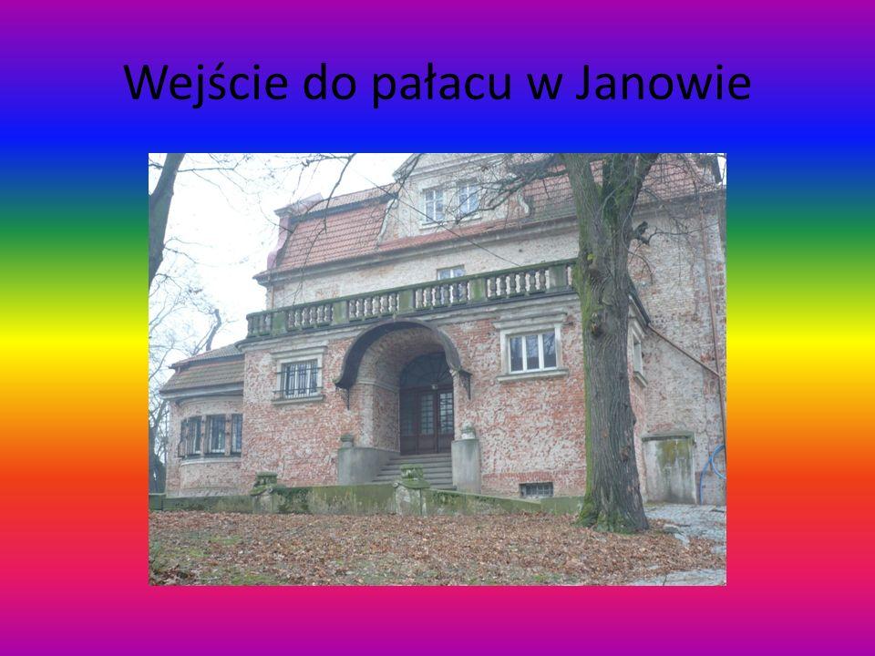 Wejście do pałacu w Janowie