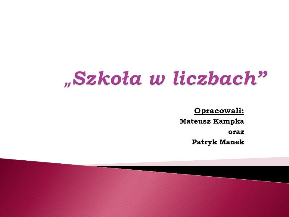 Opracowali: Mateusz Kampka oraz Patryk Manek