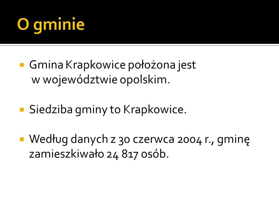 Gmina Krapkowice położona jest w województwie opolskim. Siedziba gminy to Krapkowice. Według danych z 30 czerwca 2004 r., gminę zamieszkiwało 24 817 o