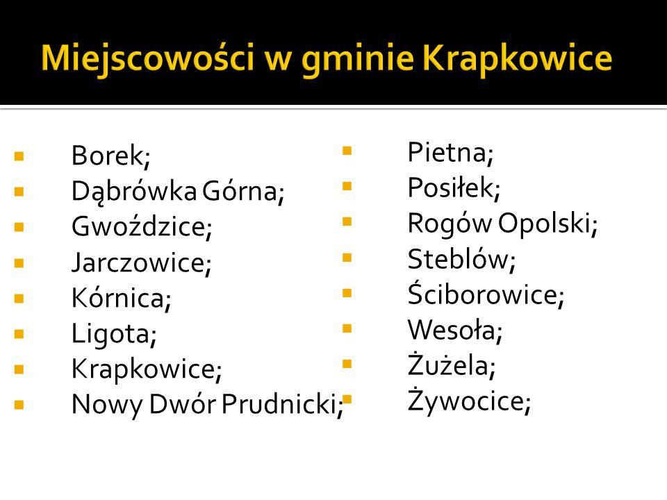 Borek; Dąbrówka Górna; Gwoździce; Jarczowice; Kórnica; Ligota; Krapkowice; Nowy Dwór Prudnicki; Pietna; Posiłek; Rogów Opolski; Steblów; Ściborowice;