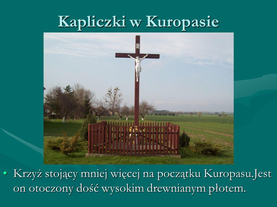 Kapliczki w Kuropasie Krzyż stojący mniej więcej na początku Kuropasu.Jest on otoczony dość wysokim drewnianym płotem.Krzyż stojący mniej więcej na początku Kuropasu.Jest on otoczony dość wysokim drewnianym płotem.