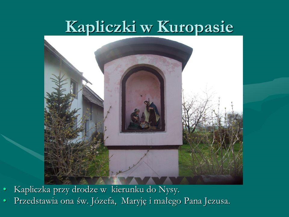 Kapliczki w Kuropasie Kapliczka przy drodze w kierunku do Nysy.Kapliczka przy drodze w kierunku do Nysy.
