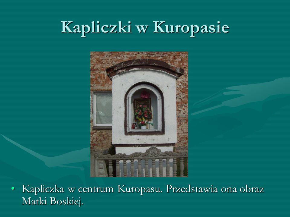 Kapliczki w Kuropasie Kapliczka przy drodze w kierunku do Nysy.Kapliczka przy drodze w kierunku do Nysy. Przedstawia ona św. Józefa, Maryję i małego P