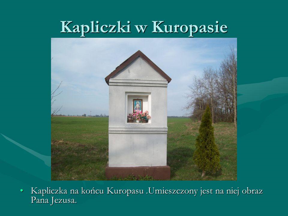 Kapliczki w Kuropasie Kapliczka w centrum Kuropasu. Przedstawia ona obraz Matki Boskiej.