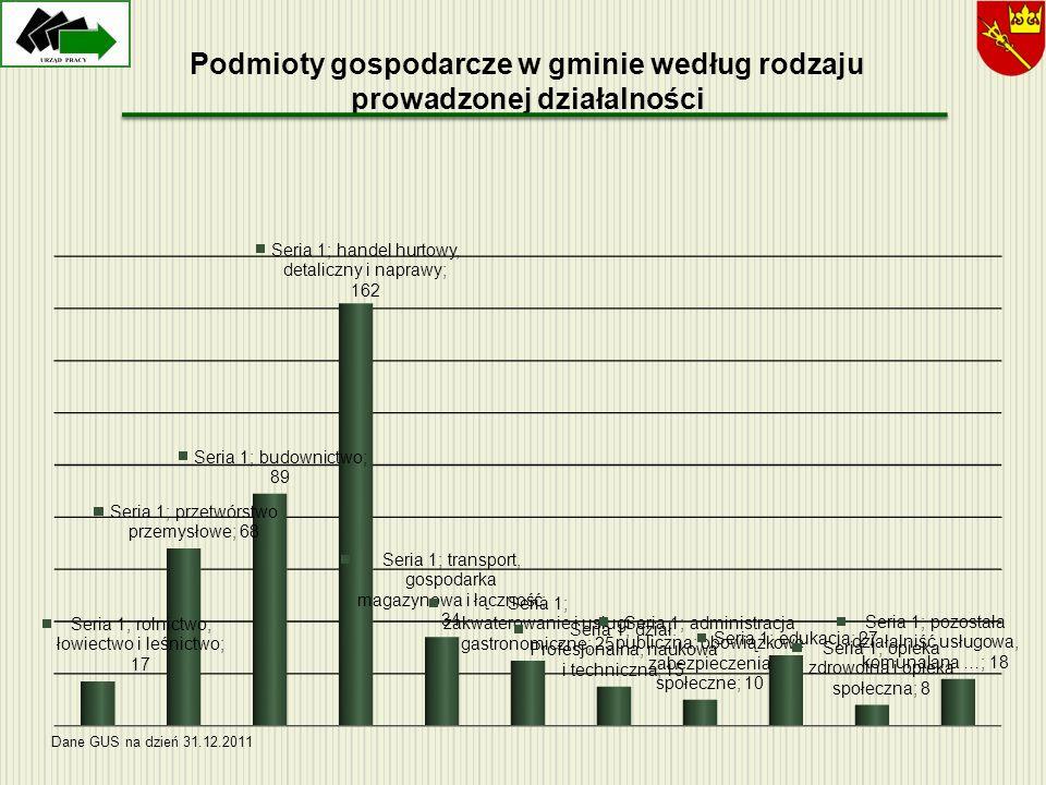 Podmioty gospodarcze w gminie według rodzaju prowadzonej działalności Dane GUS na dzień 31.12.2011