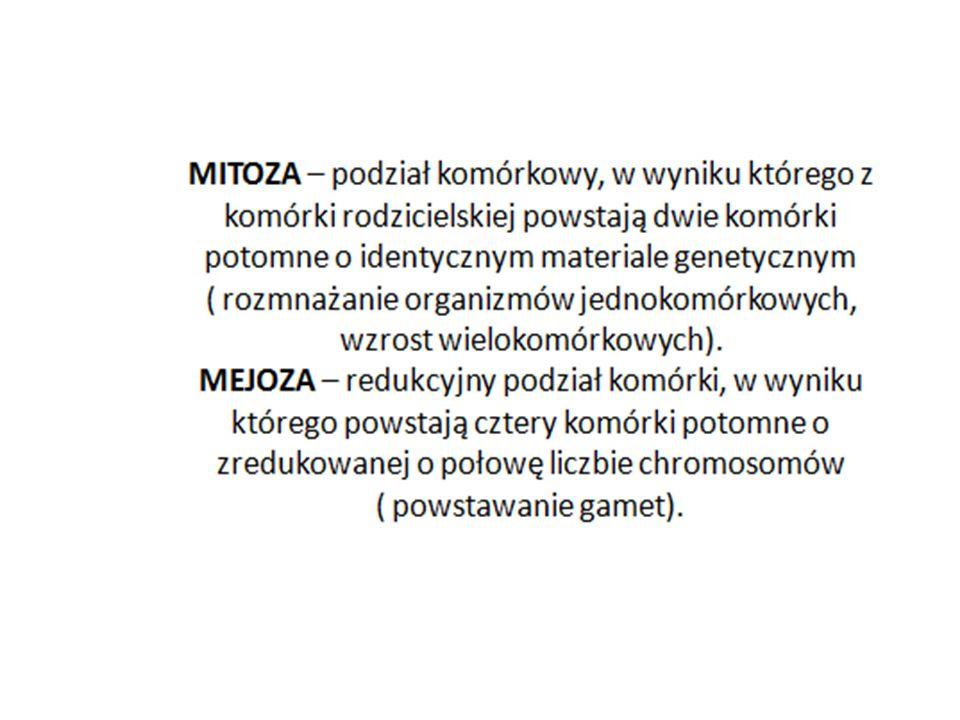 DNA – kwas deoksyrybonukleinowy, struktura podwójnej helisy, pod względem chemicznym buduje geny.
