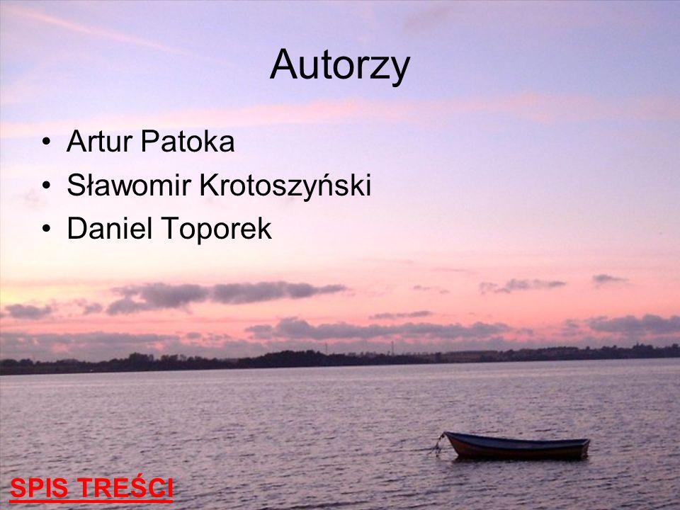 Autorzy Artur Patoka Sławomir Krotoszyński Daniel Toporek SPIS TREŚCI