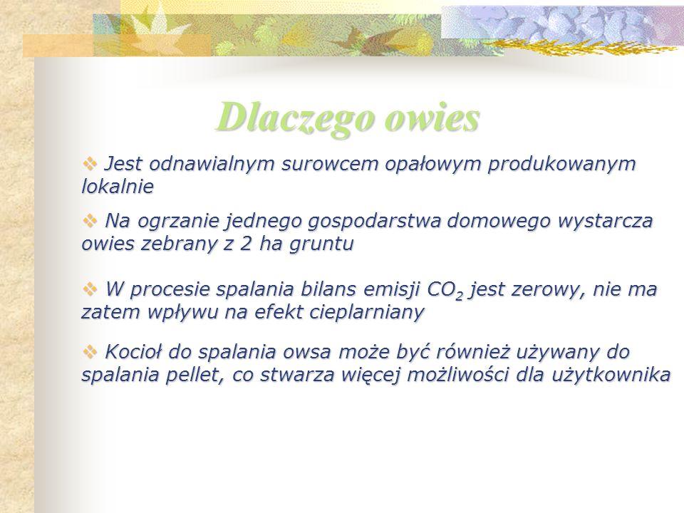 W Polsce jest dużo gruntów rolnych W Polsce jest dużo gruntów rolnych Jest łatwy w spalaniu Jest łatwy w spalaniu Cena owsa jest konkurencyjna w stosunku do innych rodzajów zbóż Cena owsa jest konkurencyjna w stosunku do innych rodzajów zbóż Jako surowiec opałowy jest tańszy od pellet Jako surowiec opałowy jest tańszy od pellet Powstały w procesie spalania popiół może być wykorzystywany jako nawóz, co może przyczynić się do redukcji użycia nawozów sztucznych Powstały w procesie spalania popiół może być wykorzystywany jako nawóz, co może przyczynić się do redukcji użycia nawozów sztucznych Dlaczego owies