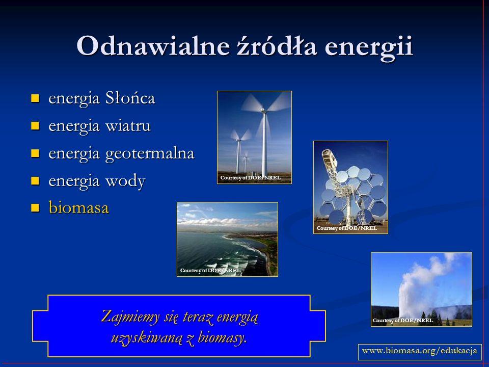 Odnawialne źródła energii energia Słońca energia Słońca energia wiatru energia wiatru energia geotermalna energia geotermalna energia wody energia wody biomasa biomasa www.biomasa.org/edukacja Zajmiemy się teraz energią uzyskiwaną z biomasy.