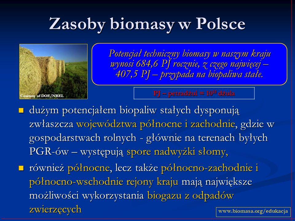 Zasoby biomasy w Polsce dużym potencjałem biopaliw stałych dysponują zwłaszcza województwa północne i zachodnie, gdzie w gospodarstwach rolnych - głównie na terenach byłych PGR-ów – występują spore nadwyżki słomy, dużym potencjałem biopaliw stałych dysponują zwłaszcza województwa północne i zachodnie, gdzie w gospodarstwach rolnych - głównie na terenach byłych PGR-ów – występują spore nadwyżki słomy, również północne, lecz także północno-zachodnie i północno-wschodnie rejony kraju mają największe możliwości wykorzystania biogazu z odpadów zwierzęcych również północne, lecz także północno-zachodnie i północno-wschodnie rejony kraju mają największe możliwości wykorzystania biogazu z odpadów zwierzęcych PJ – petradżul = 10 15 dżula www.biomasa.org/edukacja Potencjał techniczny biomasy w naszym kraju wynosi 684,6 PJ rocznie, z czego najwięcej – 407,5 PJ – przypada na biopaliwa stałe.