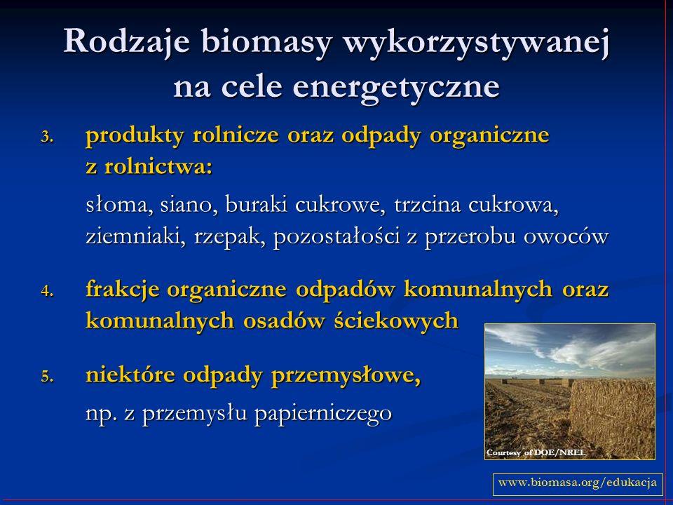 Rodzaje biomasy wykorzystywanej na cele energetyczne 3. produkty rolnicze oraz odpady organiczne z rolnictwa: słoma, siano, buraki cukrowe, trzcina cu