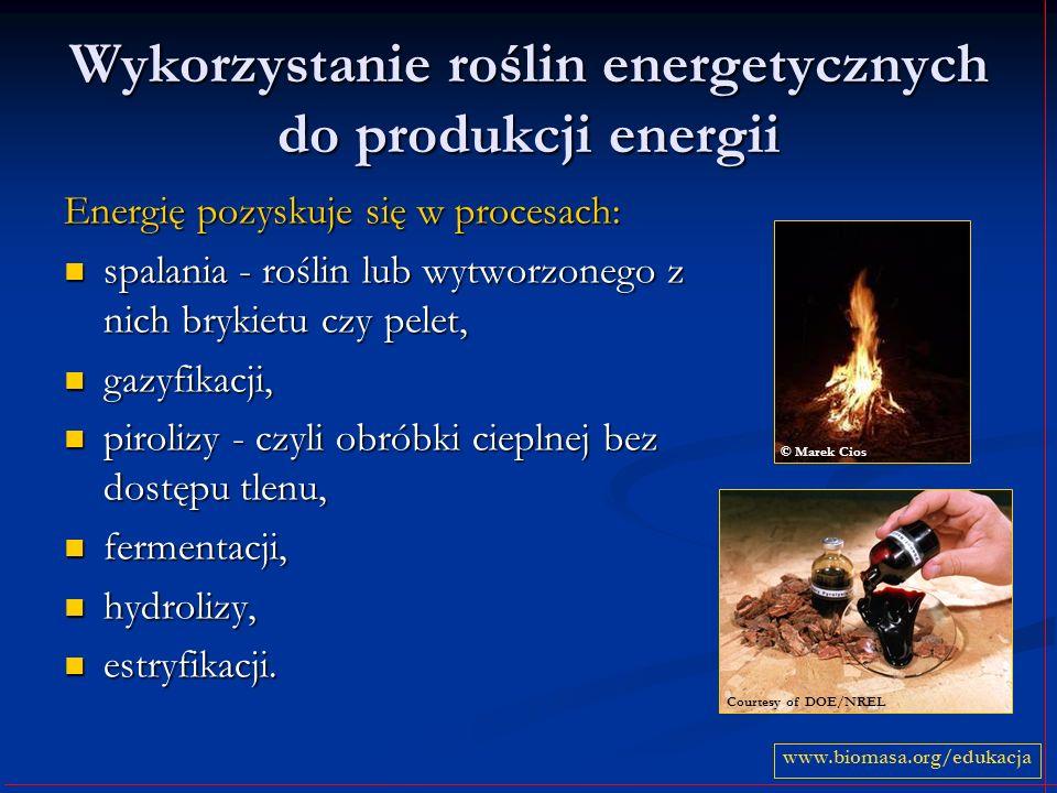 Wykorzystanie roślin energetycznych do produkcji energii Energię pozyskuje się w procesach: spalania - roślin lub wytworzonego z nich brykietu czy pelet, spalania - roślin lub wytworzonego z nich brykietu czy pelet, gazyfikacji, gazyfikacji, pirolizy - czyli obróbki cieplnej bez dostępu tlenu, pirolizy - czyli obróbki cieplnej bez dostępu tlenu, fermentacji, fermentacji, hydrolizy, hydrolizy, estryfikacji.