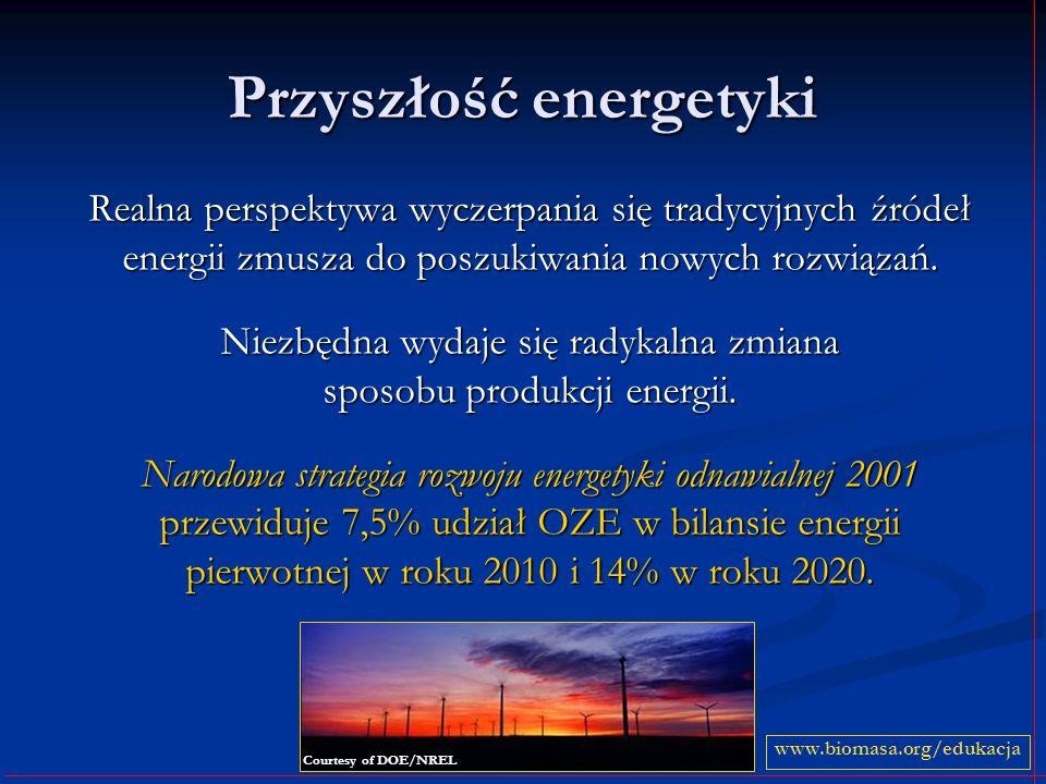 Przyszłość energetyki Realna perspektywa wyczerpania się tradycyjnych źródeł energii zmusza do poszukiwania nowych rozwiązań.