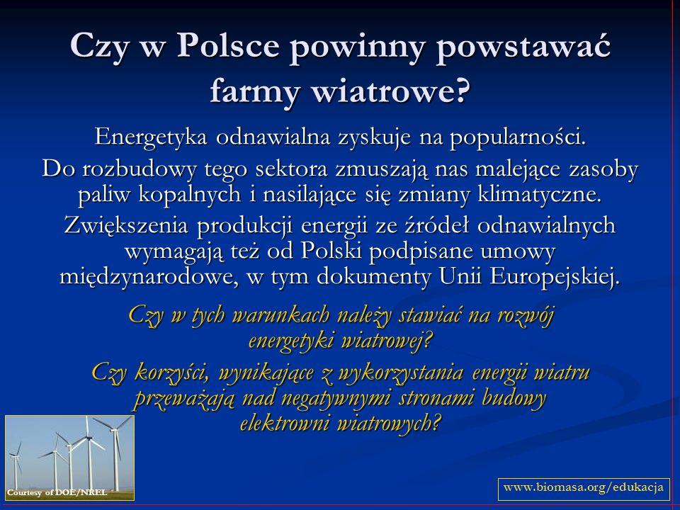 Czy w Polsce powinny powstawać farmy wiatrowe? Energetyka odnawialna zyskuje na popularności. Do rozbudowy tego sektora zmuszają nas malejące zasoby p