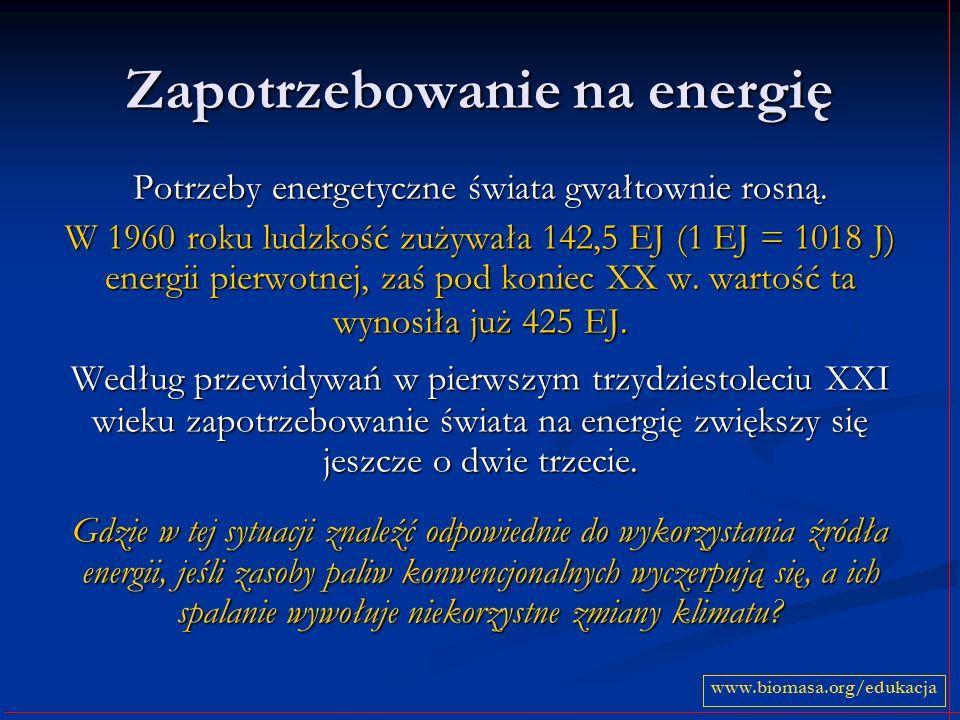 Zapotrzebowanie na energię Potrzeby energetyczne świata gwałtownie rosną. W 1960 roku ludzkość zużywała 142,5 EJ (1 EJ = 1018 J) energii pierwotnej, z