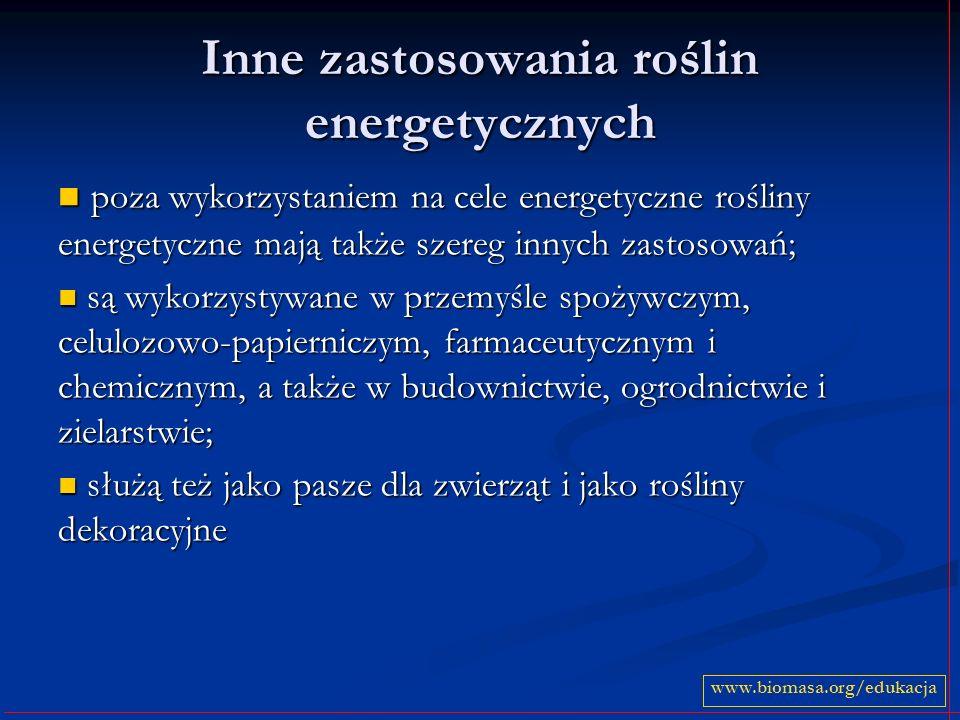 Inne zastosowania roślin energetycznych poza wykorzystaniem na cele energetyczne rośliny energetyczne mają także szereg innych zastosowań; poza wykorz