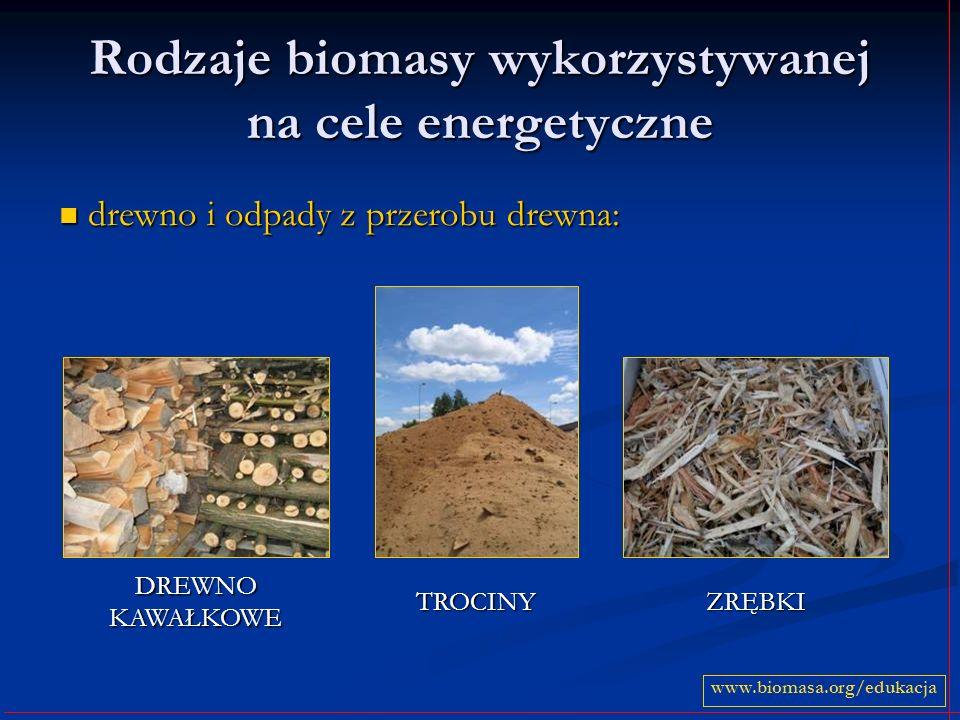 Rodzaje biomasy wykorzystywanej na cele energetyczne drewno i odpady z przerobu drewna: drewno i odpady z przerobu drewna: www.biomasa.org/edukacja DR