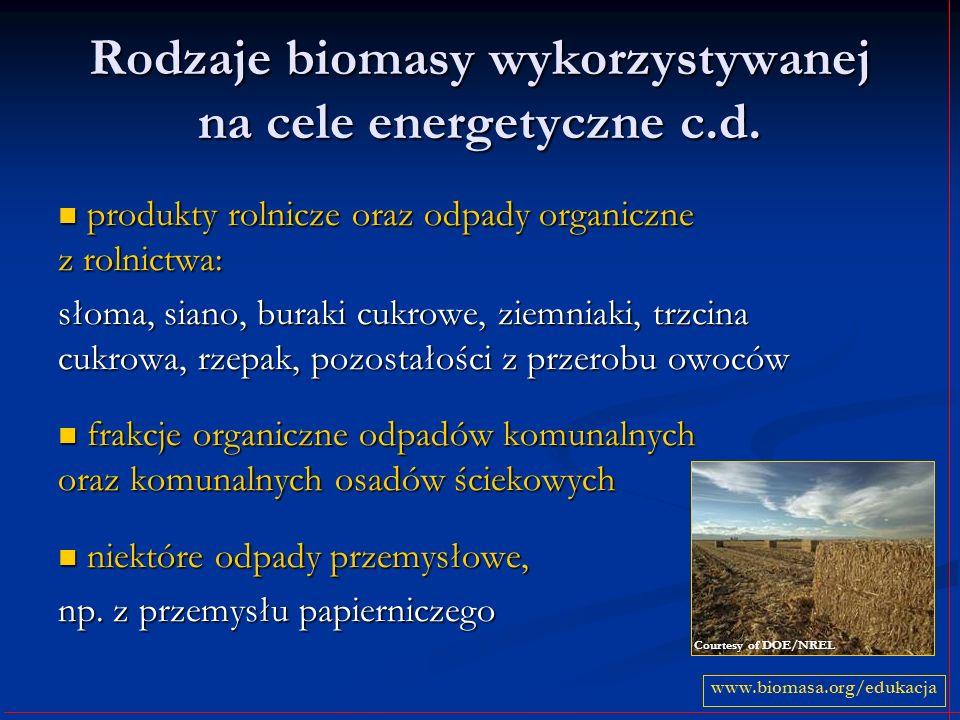 Rodzaje biomasy wykorzystywanej na cele energetyczne c.d. produkty rolnicze oraz odpady organiczne z rolnictwa: produkty rolnicze oraz odpady organicz