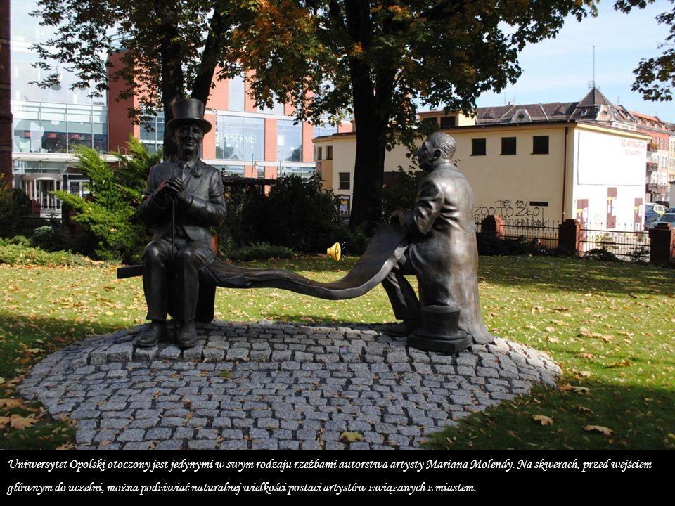 Zdjęcia: Bognika październik 2013 rok
