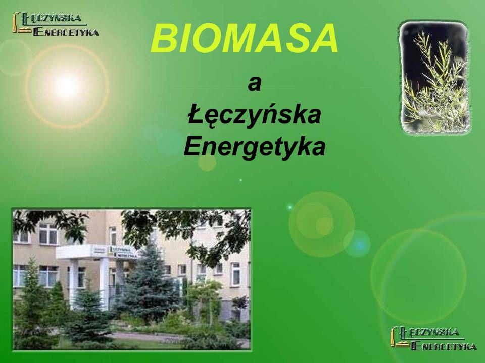 BIOMASA a Łęczyńska Energetyka