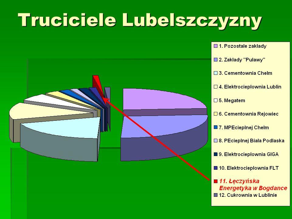 Wielkość emisji pyłów i gazów na terenie lubelszczyzny