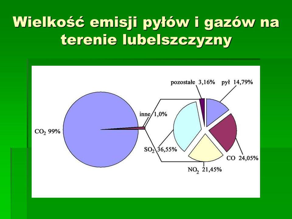 Energetyka Łęczyńska stale eksperymentuje W zakładzie prowadzi się badania nie tylko nad wierzbą, ale również nad przystosowaniem kotłów do współspalania węgla i biomasy.
